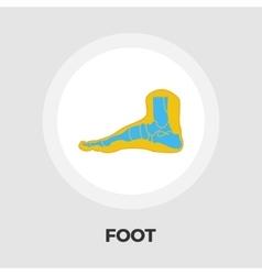 Foot anatomy flat icon vector image