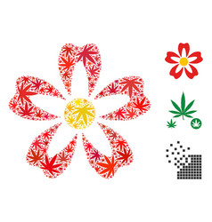 flower collage of hemp leaves vector image