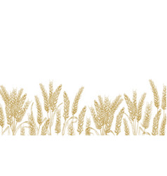 horizontal background with wheat ears at bottom vector image