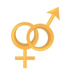 male and female union symbols vector image