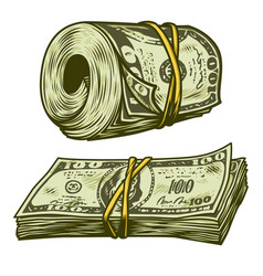 Money bundle isolated vector