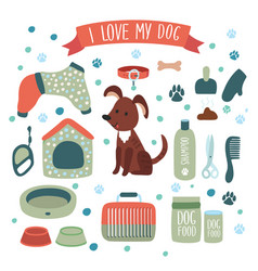 set accessories for dog vector image