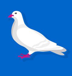 white bird sitting vector image