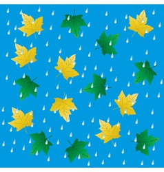 Rain and falling leaves vector image vector image