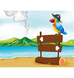 A parrot with pirate hat above the wooden vector