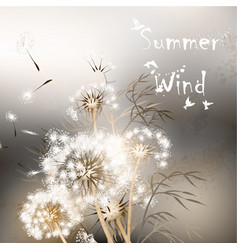 background with dandelions summer wind vector image