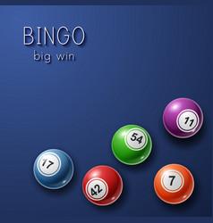 bingo lottery poster background vector image