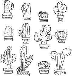 Cactus black and white vector