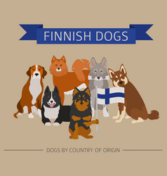 dogs by country of origin finnish dog breeds vector image