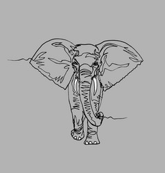 elephant africa continuous line vector image