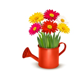 Fresh summer flowers in orange watering can vector image