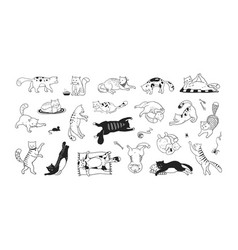 Hand drawn cats funny and cute pets doodle black vector