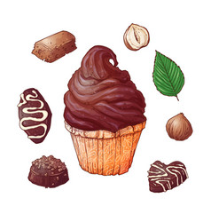 set of cupcakes chocolates end nuts hand drawing vector image