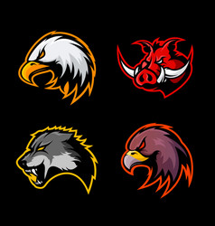 Furious boar wolf panther and eagle head sport vector