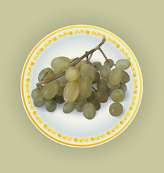 Bunch of white grapes on plate vector