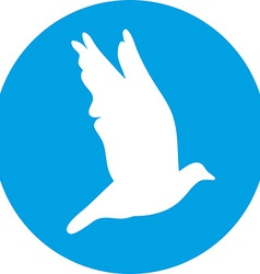Dove for peace concept and wedding design Flying vector image