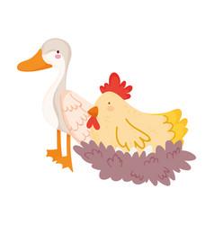 farm animals cartoon goose and hen in nest cartoon vector image