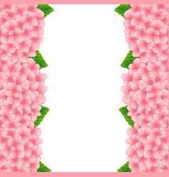 pink hydrangea flower border vector image