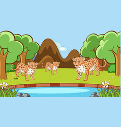 scene with tigers in forest vector image