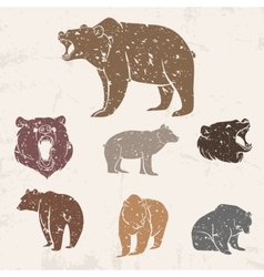 Set of different bears vector