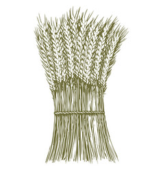 woodcut wheat stack vector image