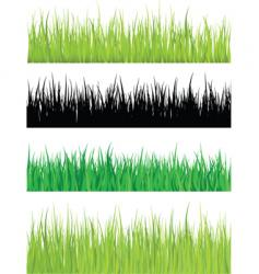 detailed grass vector image vector image