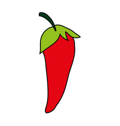 hot vegetable paprika vector image vector image