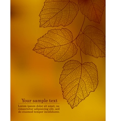 Autumn bokeh leaf vector image