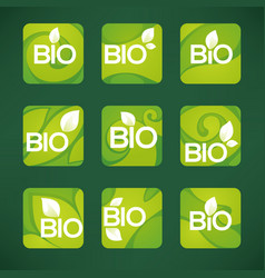 bio product organic leaves emblems stickers vector image