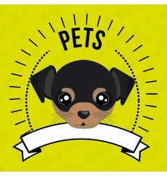 dog pet mascot icon vector image