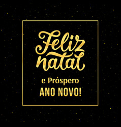 Merry christmas and happy new year in portuguese vector