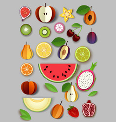 Paper cut craft style summer fruits vector