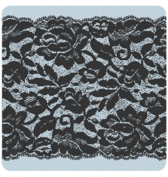black lace vector image vector image