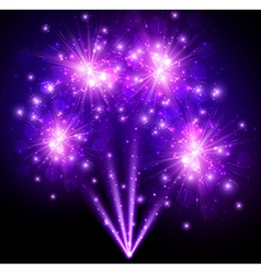 Festive purple firework background vector image vector image