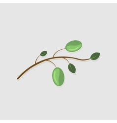 modern olive branch on gray vector image