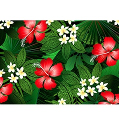 Detailed tropical flowers and plants vector image