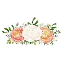 floral bouquet with white pink peach ranunculus vector image