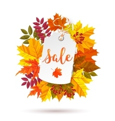 Autumn sale label vector