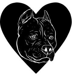 Black silhouette pitbull head dog in heart vector