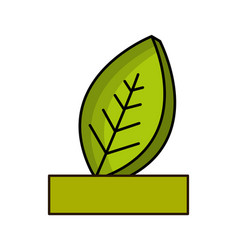 natural leaf with ribbon icon vector image