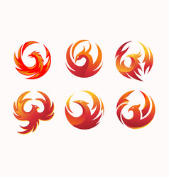 phoenix circle collection vector image