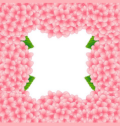 Pink hydrangea flower border vector