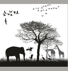 safari with giraffes herons geese and the vector image