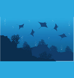 Silhouette of stingray and reef underwater vector