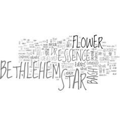 bethlehem flower text word cloud concept vector image vector image