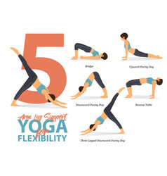 Arm and leg support yoga poses for flexibility vector