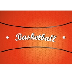 Basketball texture vector image