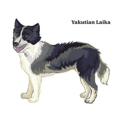 colored decorative standing portrait yakutian vector image