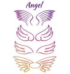 Colorful elegant angel flying wings collection vector