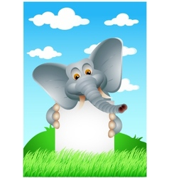 elephant cartoon with blank sign vector image vector image